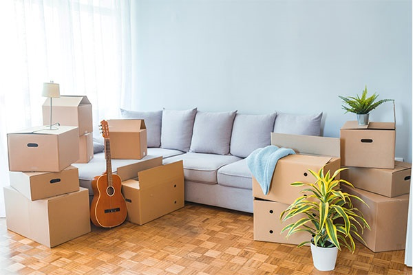 Professional assistance to move goods into Australia