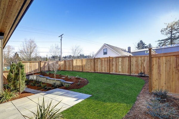 Lawn Care: Important Things You May Be Missing Out On