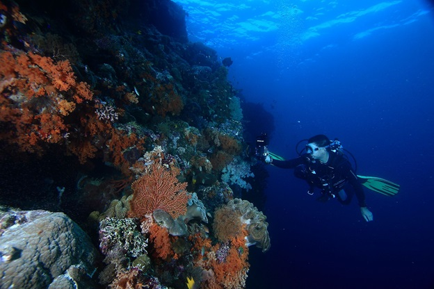 6 Recommendations and Favourite Tourist Destinations in Wakatobi